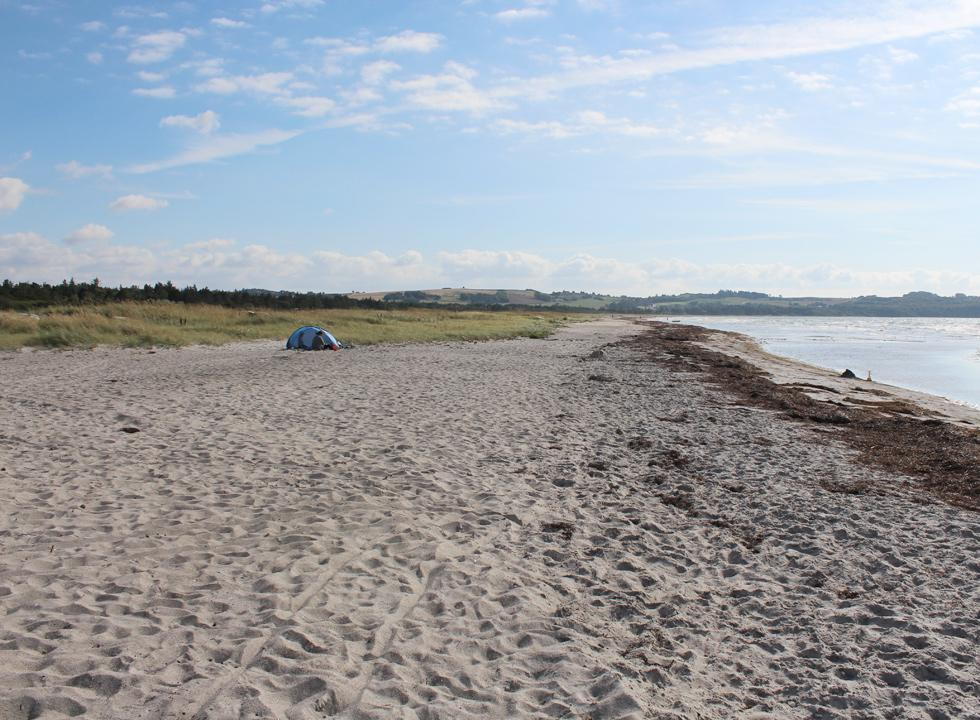 The long beach in Hønsinge Lyng is surrounded by forest and hilly nature