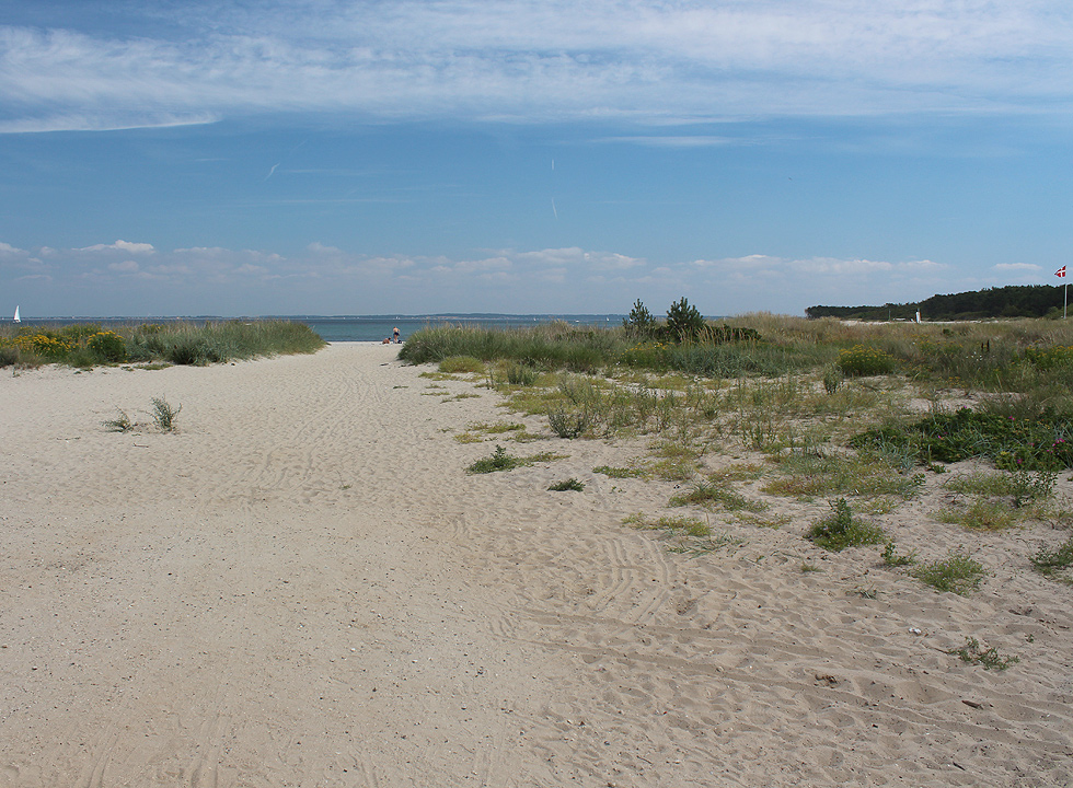 Path, leading to the beach on the other side of the marina in Hornbæk