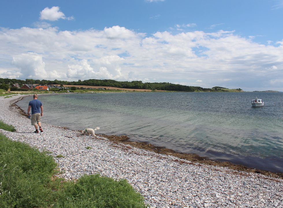 A man walks his dog on the stone beach in Horne Sommerland
