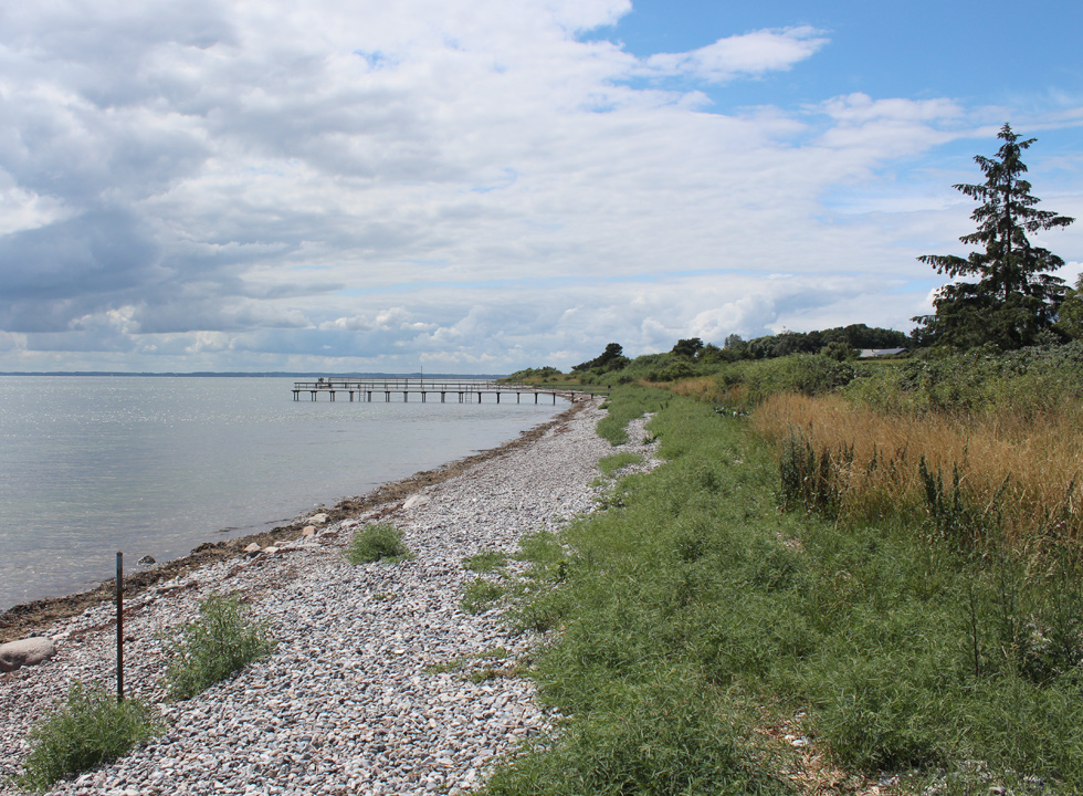 View along the shore and the stone beach by the holiday home area Horne Sommerland