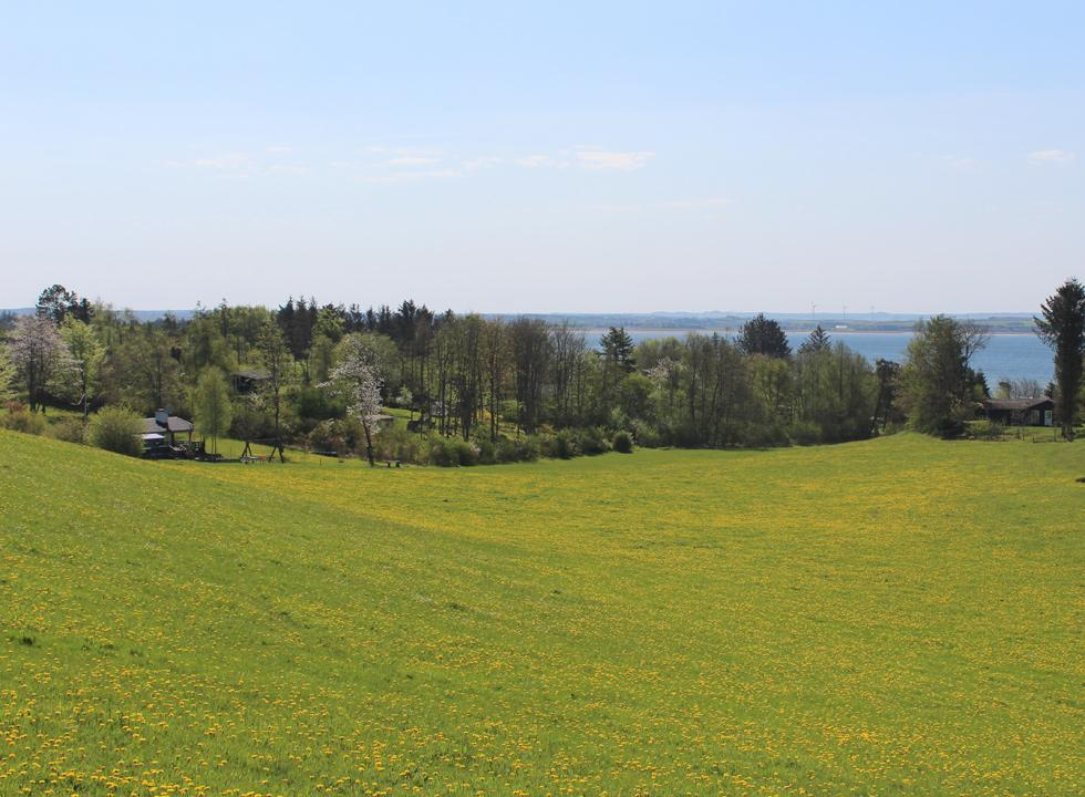View of the holiday home area Hostrup and the Limfjord from the top of the hill