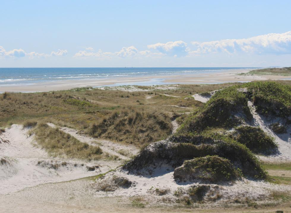 View of the southern part of the beach in Hou
