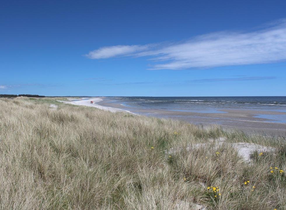 View of the northern part of the beach in Hou from the top of the dunes