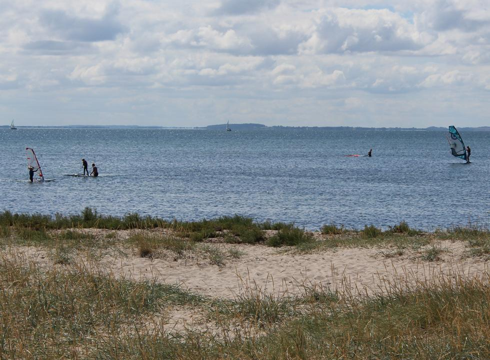 Surfers on all levels, on and in the water, in Lynæs near Hundested