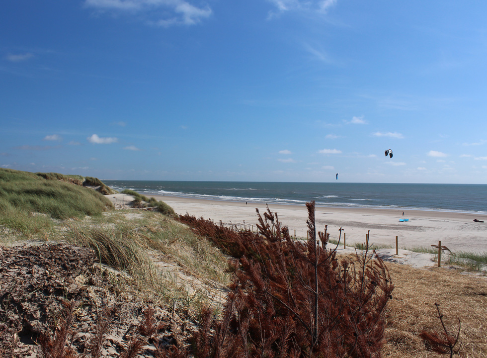 A piece of the North Sea beach in Hvide Sande is dedicated surfers, wakeboarders and kite surfers