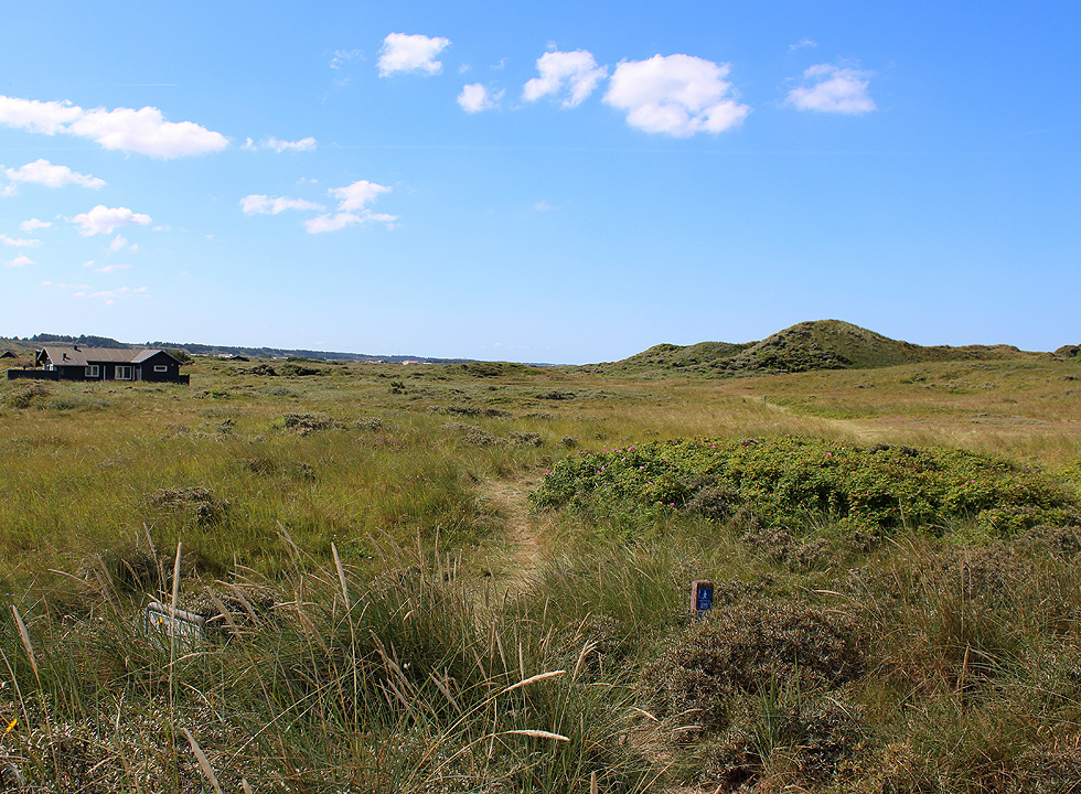 Nature path and holiday home in the dune area behind the shore of Kærsgård Strand