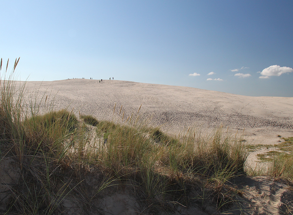Persons on the top of the sand dune in Råbjerg Mile