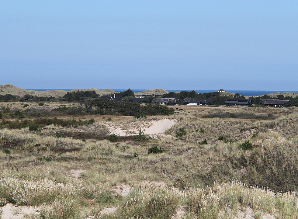 The dune landscape of Kandestederne with holiday homes and the sea in the background