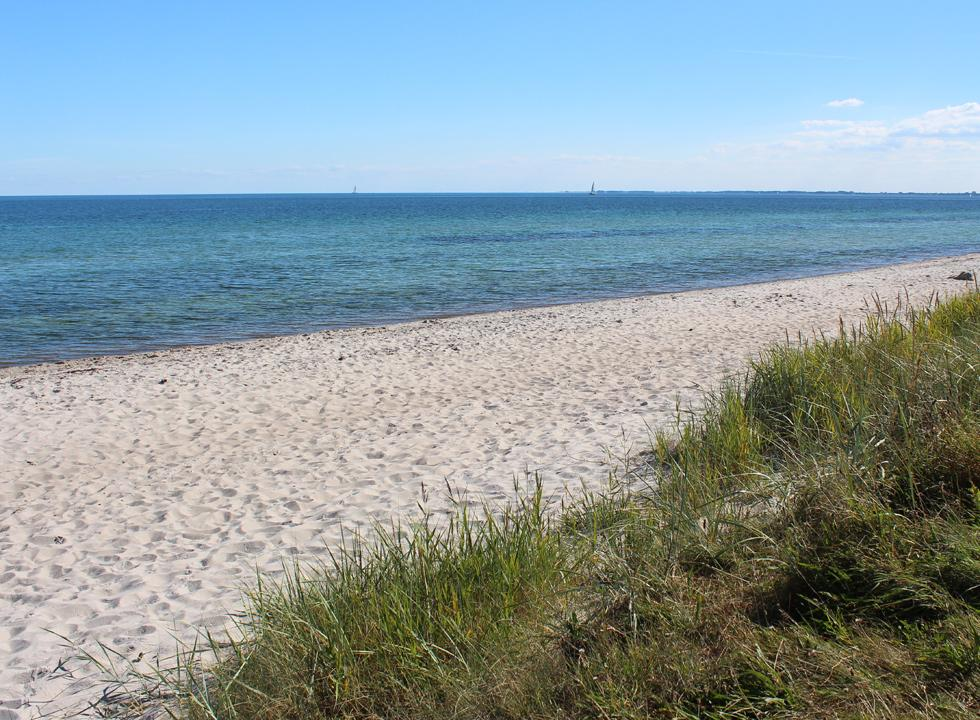Lovely sandy beach with inviting bathing water in the holiday home area Kegnæs