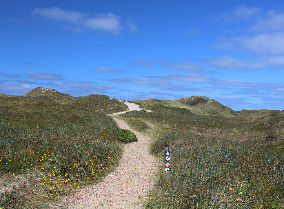 The hilly dune landscape between the holiday homes and bathing beach of Klegod