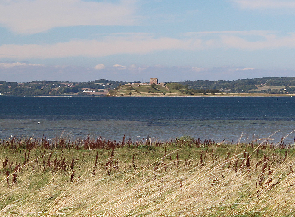 View of the castle ruin, Kalø Slotsruin, which is situated close to Knebel