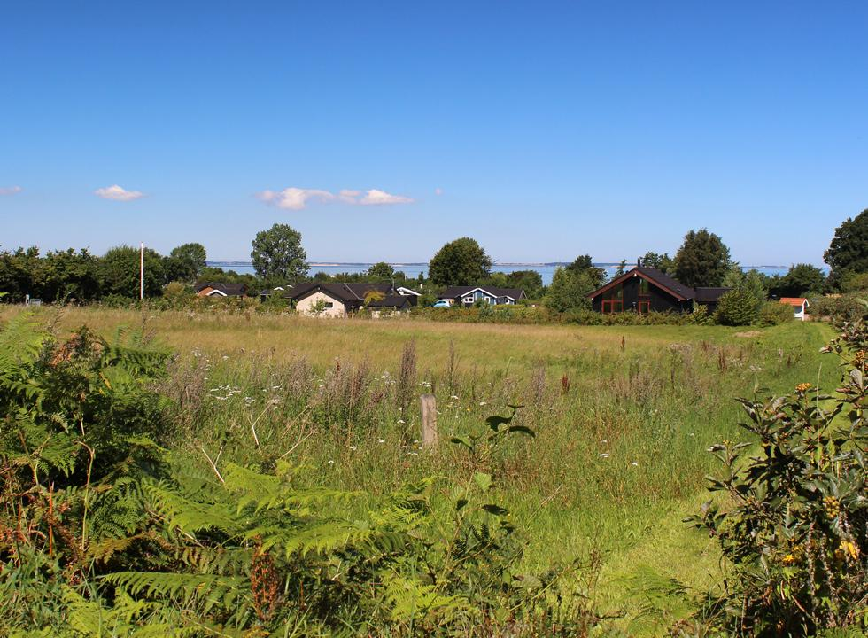 Holiday homes in the green surroundings behind the beach of the holiday area Købingsmark