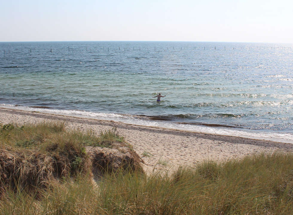 View of the beach and the sea from the dunes in Kramnitse