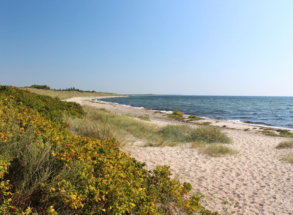 The long sandy beach in the holiday home area Kramnitse