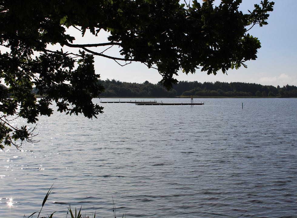 View of the lake Kvie Sø from the shore