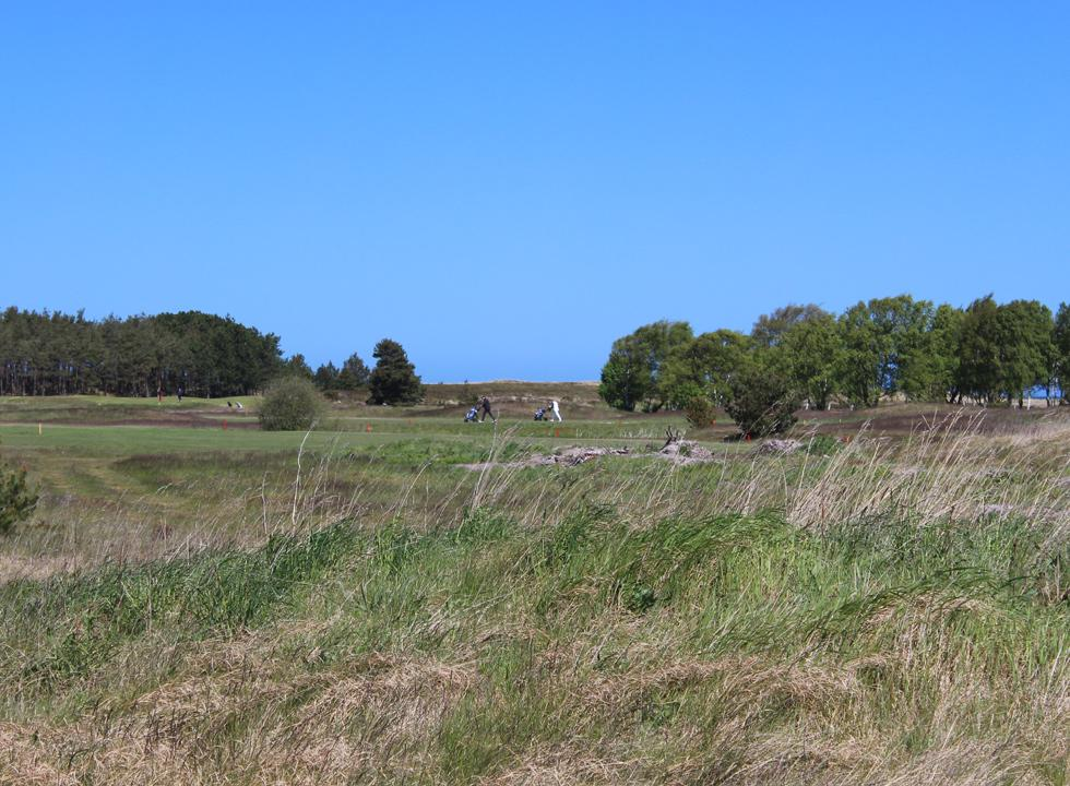 The beautiful golf course is located close to the holiday homes of Nordmarken on Laso