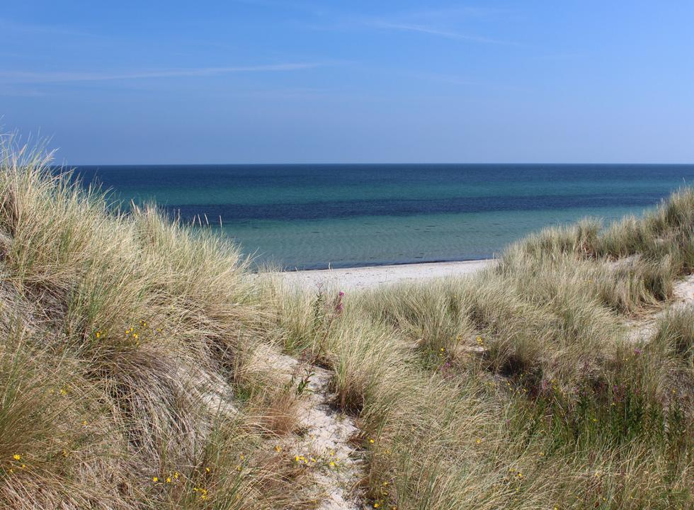 View of the beach Hvide Bakker and the tranquil water from the high dunes near Nordmarken on Laso
