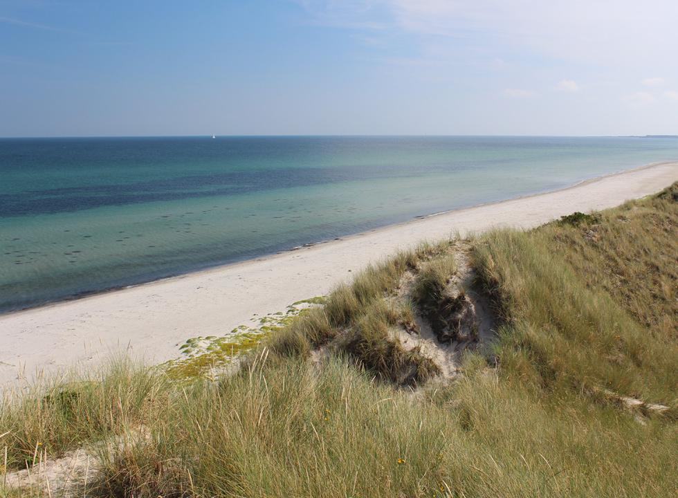 View of the beach Hvide Bakker and the clear water from the high dunes
