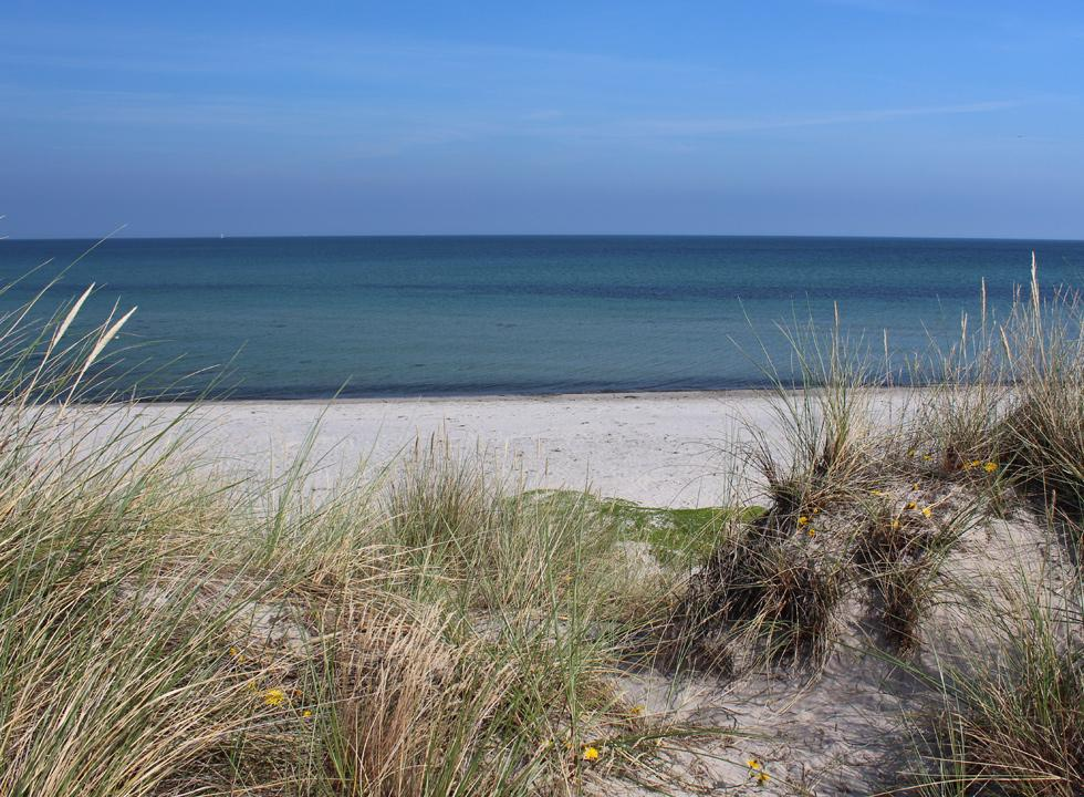 The bathing water in Osterby is very tranquil and child-friendly at the water's edge