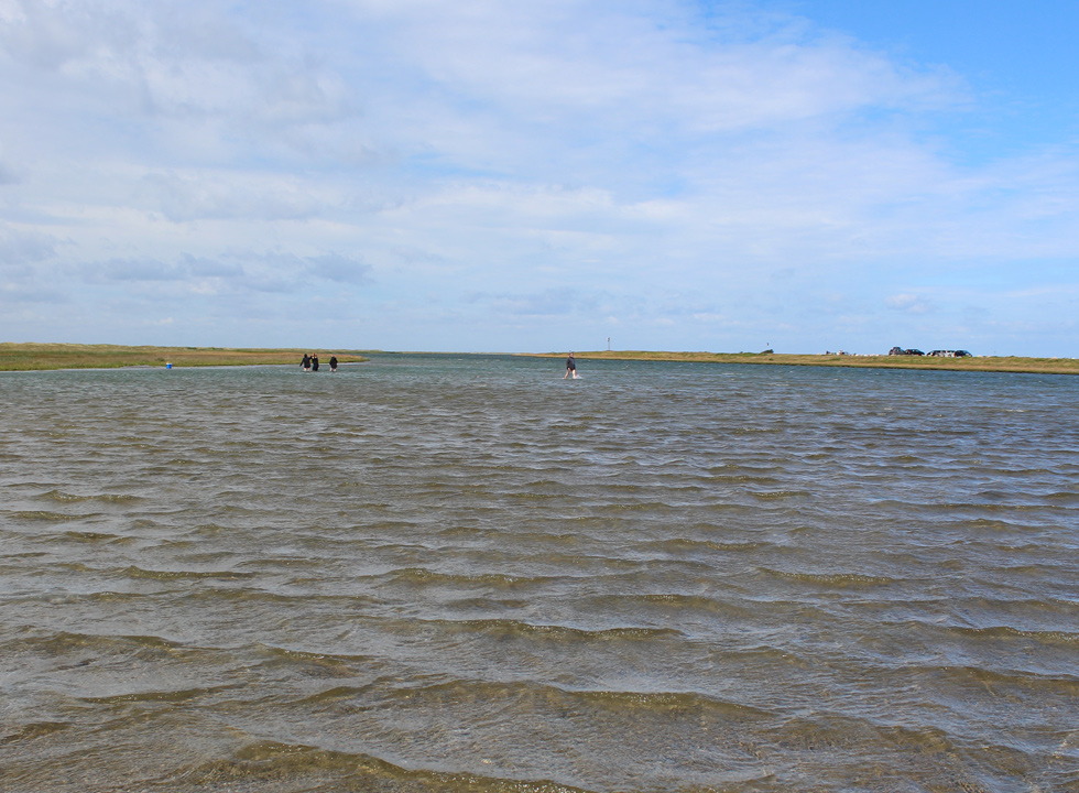 You can walk across the shallow water to the island Stokken, near Vestero Syd on Laso
