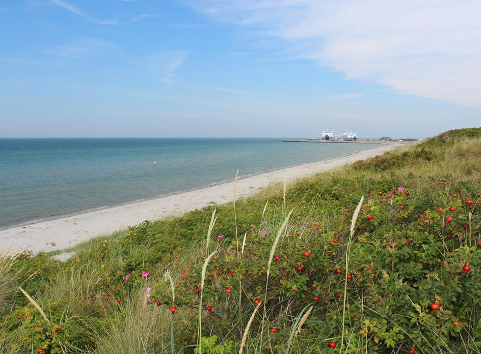 View towards the Laso ferries in the harbour from the dunes behind the beach in Vestero