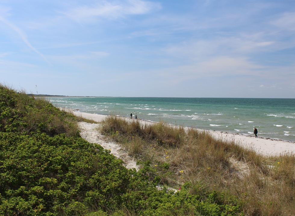 A windy spring day on the beach in Vestero