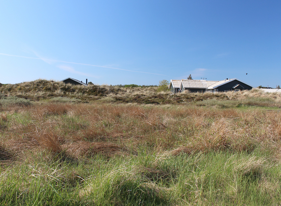 Holiday homes in the hilly dune landscapes of Lild Strand
