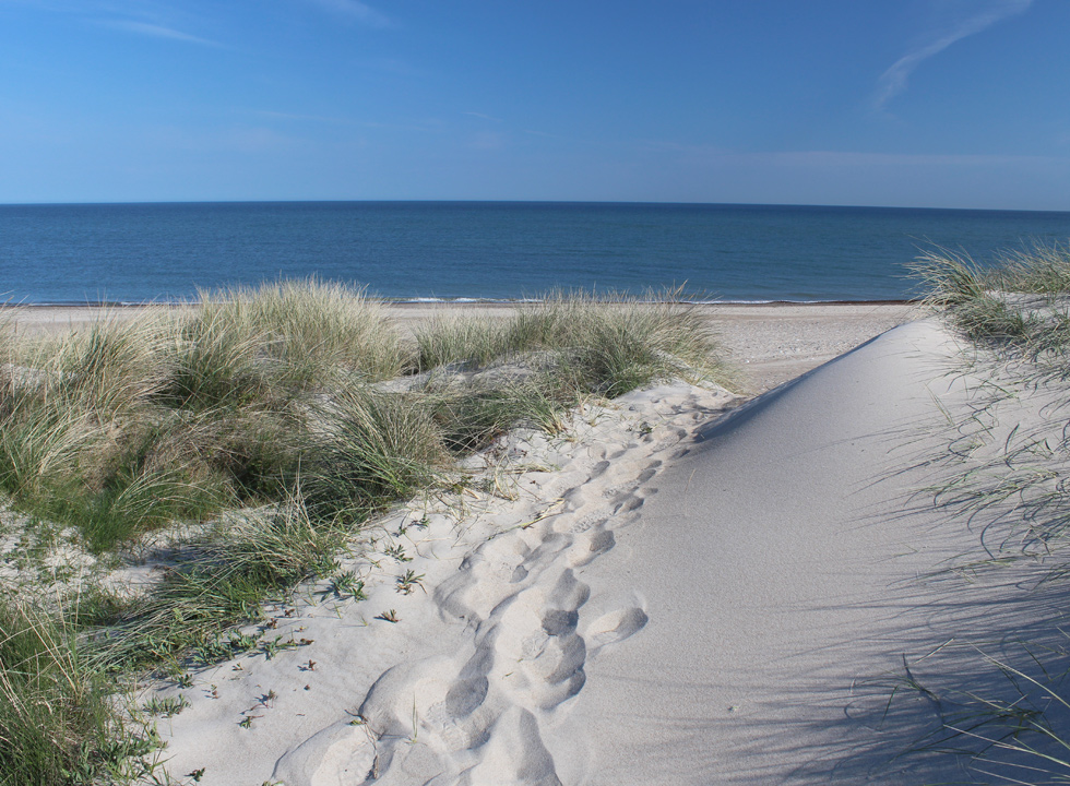View of the sandy beach in Lild Strand from the dunes