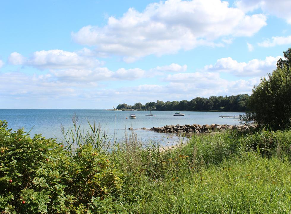 View of the water in Løjt from the green surroundings behind the shore