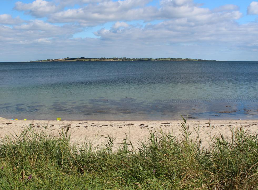 View of the green island, Barsø, from the beach in Løjt