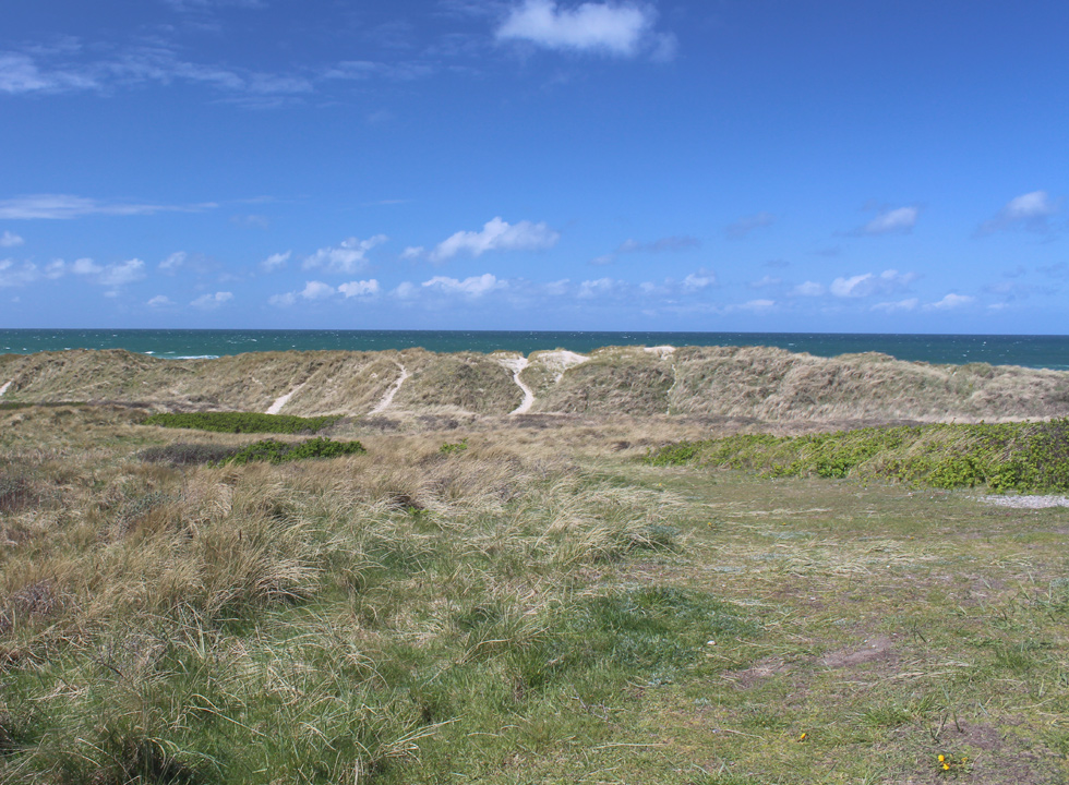 Dune landscape behind the beach of Lokken