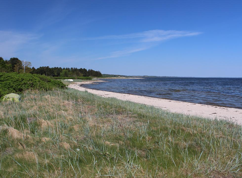 View along the beach of the holiday home area Lundø