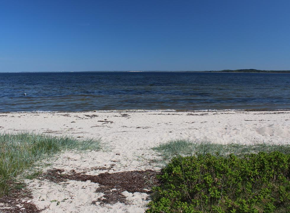 Lovely sandy beach with shallow bathing water in the holiday area Lundø