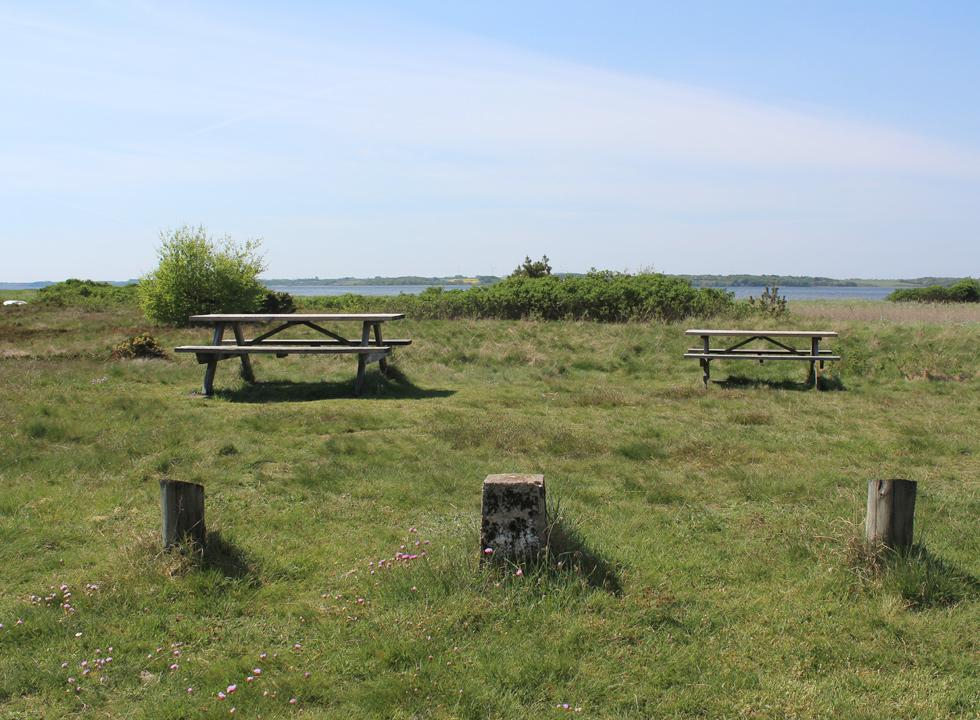 Picnic area behind the beach of the holiday home area Lundø
