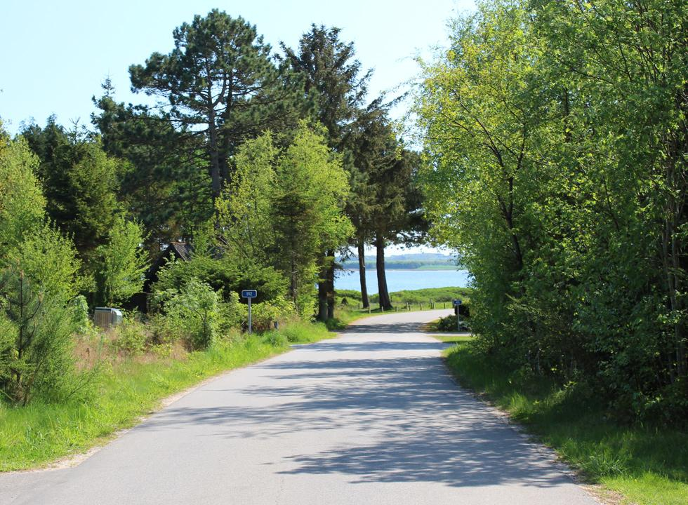 A road with holiday homes along the shore on the peninsular Lundø