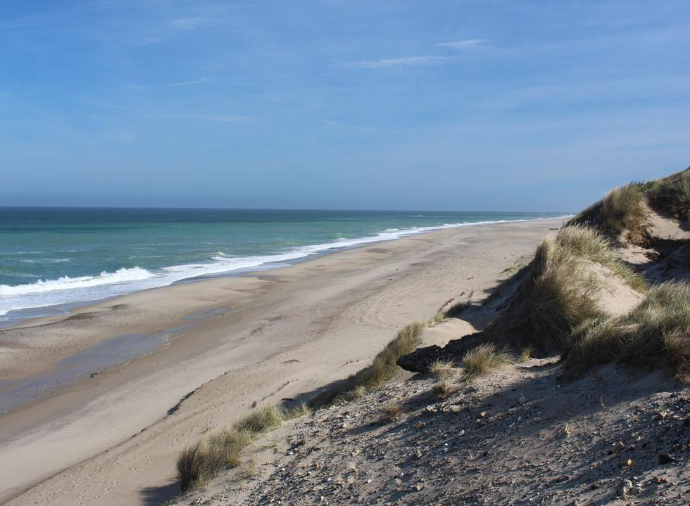The wide sandy beach below the dunes in the holiday area Lyngby, Thy