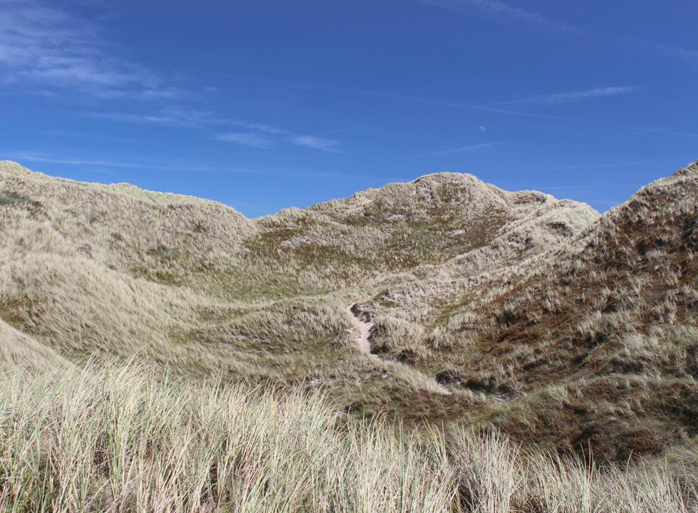A path leads you through the dunes and down to the beach in Lyngby, Thy