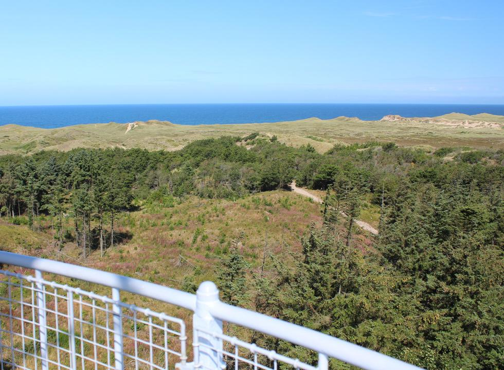 View of the nature and the North Sea from the lighthouse Lodbjerg Fyr in Nationalpark Thy, 7 km from Lyngby, Thy