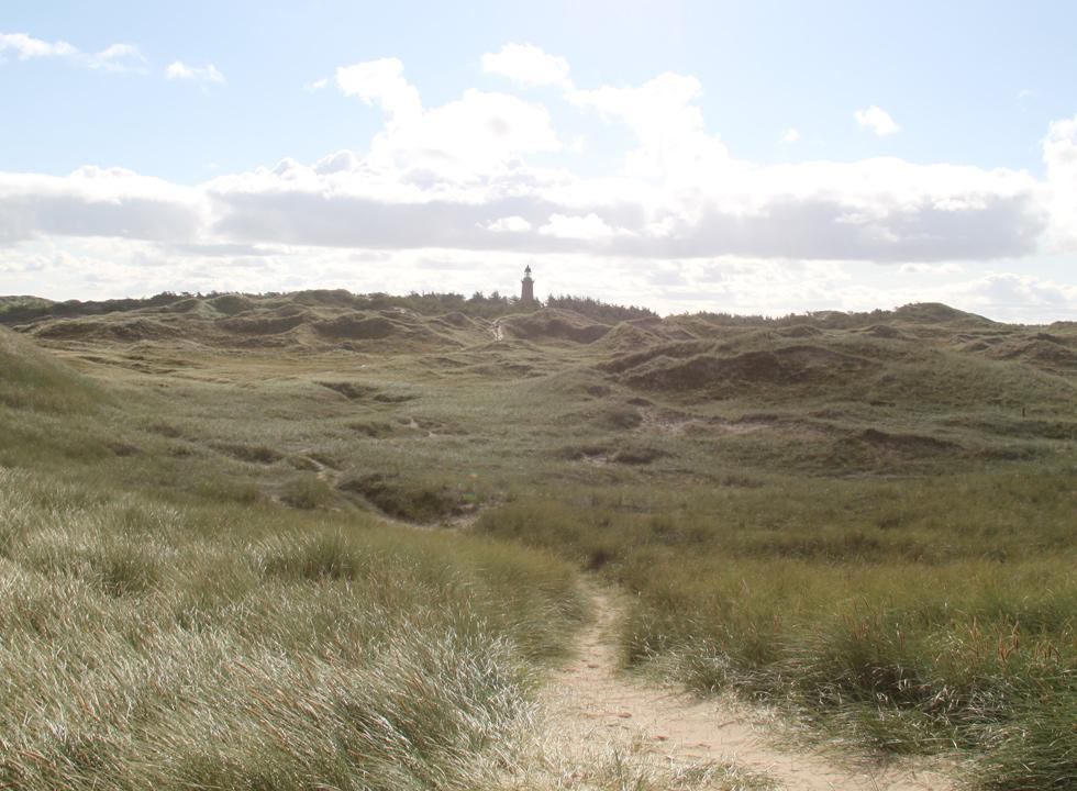View towards the lighthouse Lodbjerg Fry from the dunes by the sea, close to Lyngby, Thy