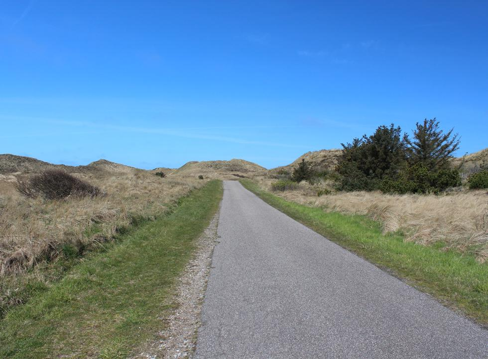 The road from Lyngby, Thy, which leads through the dunes to the unspoiled bathing beach