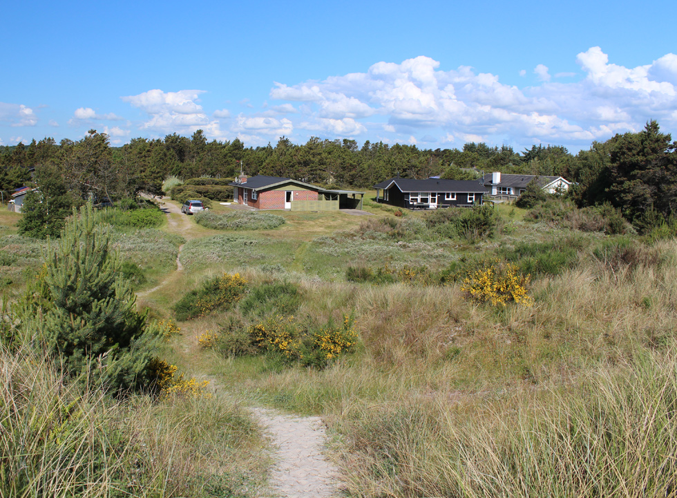 Well-situated holiday homes, right behind the dunes of the beach, in Lyngså