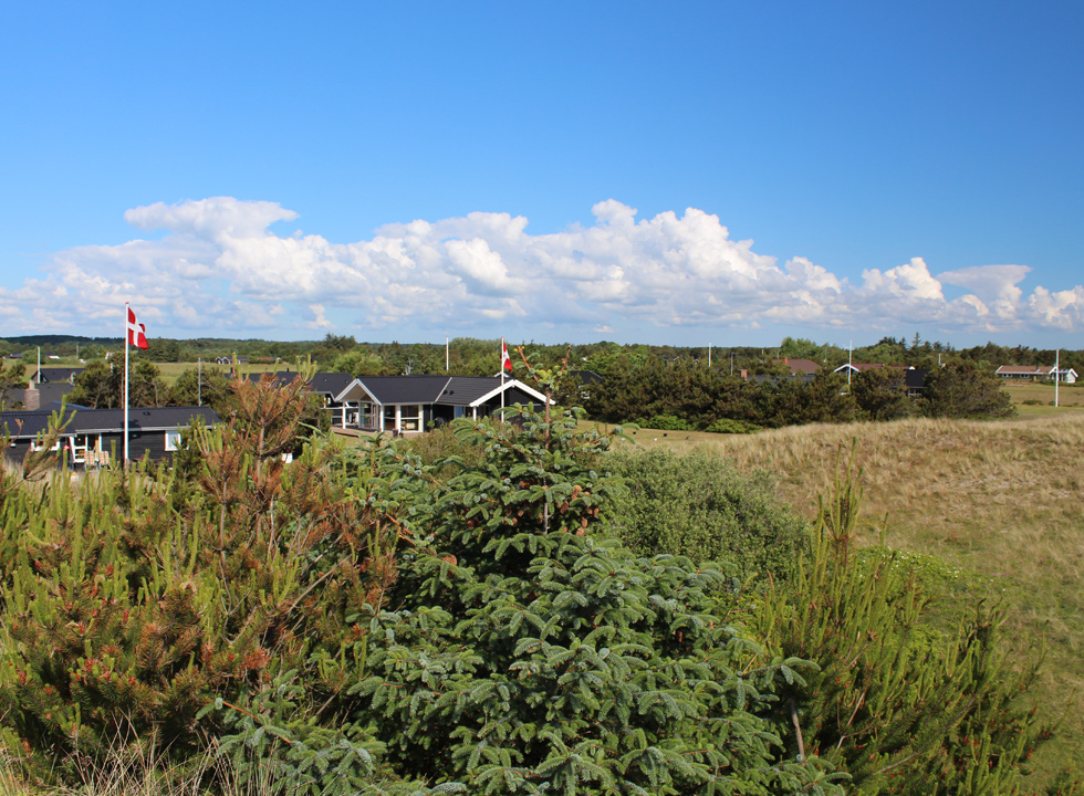 View of the holiday home area from the dunes in Lyngså