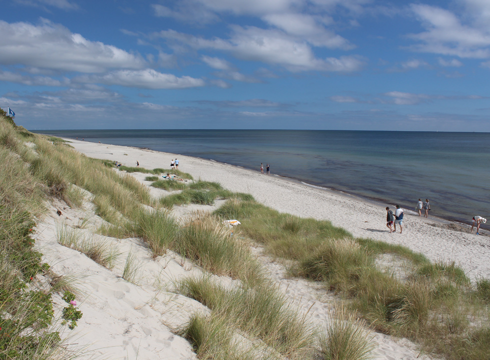 Bathers on the lovely sandy beach with high dunes and blue flag in Lyngså