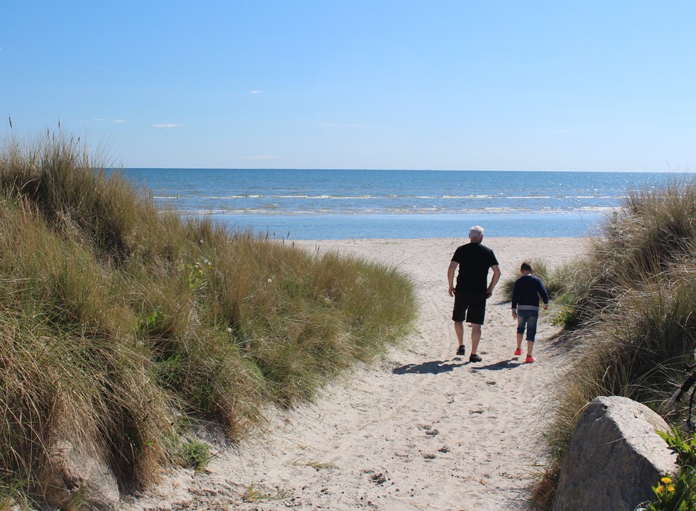 Path between the dunes to the beach in Lyngså