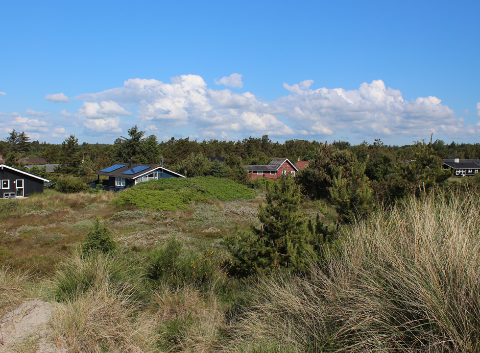 Holiday homes in green surroundings behind the beach in Lyngså