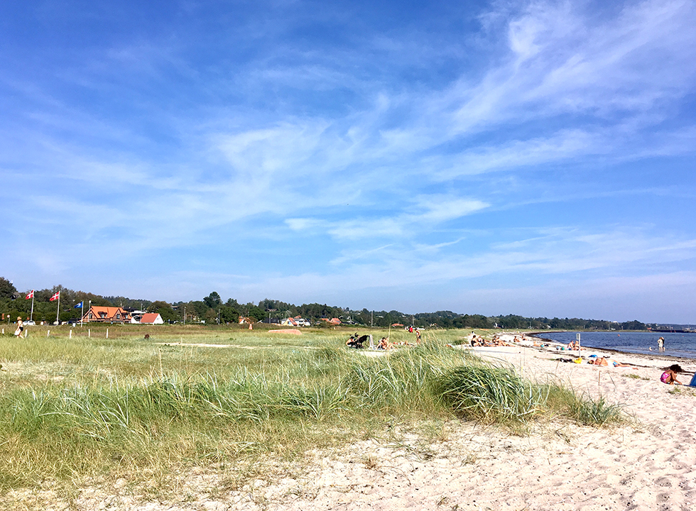 The beach in Lyngsbæk is surrounded by holiday homes and green nature