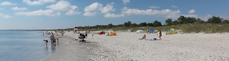 Bathers on the kilometres long wide and sandy bathing beach with child-friendly water in Marielyst