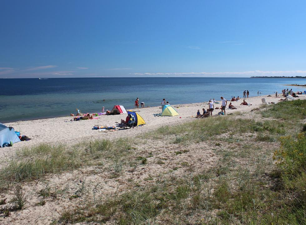 A lovely Danish summer day on the bathing beach in the holiday home area Mommark