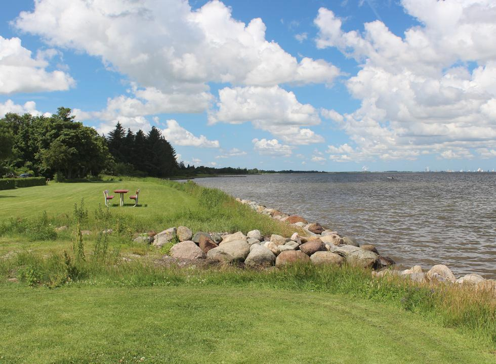Green spaces behind the Limfjord shore in the holiday home area Mou