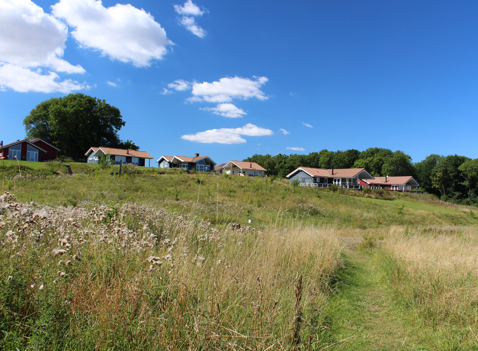 Highly situated holiday homes in the green surroundings behind the shore in Nørre Kettingskov